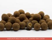 04_Hazelnuts-Milk-chocolate-covered-and-Cocoa-_Ambrosio