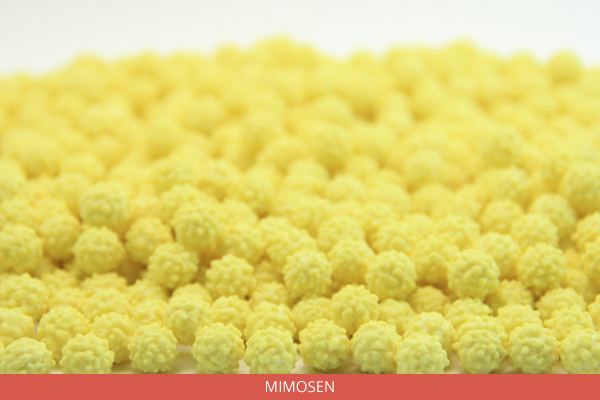 Mimosen - Ambrosio